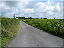 N4018 : Minor road leading to Ballina by David Purchase