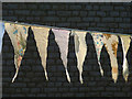SD4972 : Bunting in Warton (5) by Karl and Ali