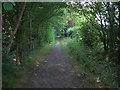 TL4052 : Footpath near Haslingfield by Hugh Venables
