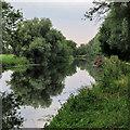 TL4964 : Still waters near Clayhithe by John Sutton