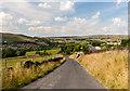 SE0007 : Ward Lane by Peter McDermott