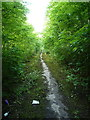 SJ9304 : The old Cannock Road by Richard Law