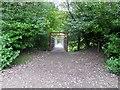 SD7406 : Footbridge over the River Croal by Philip Platt