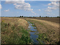 TL3666 : Drainage ditch off Tippler's Road by Hugh Venables