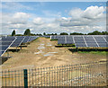 TM4587 : New solar farm in Ellough by Evelyn Simak