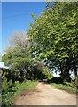 SX3670 : Track to Pengover by Derek Harper