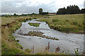 SJ8880 : Meanders of the Bollin by Anthony O'Neil