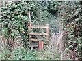 SJ3660 : Footpath, Stile and Brambles near Dodleston by Jeff Buck