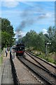 TQ8628 : 12.50 departing Wittersham Rd Station : Week 34