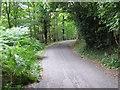 TM4566 : Road from RSPB Minsmere to Eastbridge by Roger Jones