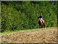 SU7048 : Horse and rider on footpath near Bidden Lane : Week 35