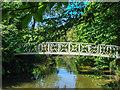 TL3071 : Footbridge near River Great Ouse by Kim Fyson