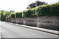 SZ3295 : Serpentine Wall by Anne Burgess