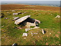 SX1781 : Cairn and Cist, Buttern Hill by Chris Andrews