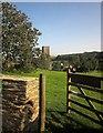 SX8042 : Stokenham village green by Derek Harper