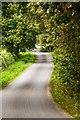 SJ7273 : Back Lane by Peter McDermott