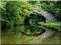 SK0182 : Greensdeep Bridge north of Whaley Bridge, Derbyshire : Week 36