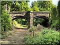 SJ8898 : Bridge over the Moat at Clayton Hall : Week 37