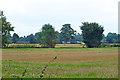 TQ0093 : Stubble fields by Robin Webster