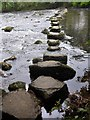 SE0559 : Dales Way trek from Bolton Abbey to Pinder Stile (52) by Basher Eyre