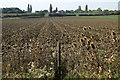 TL0653 : Farmland looking towards Cleat Hill by Philip Jeffrey