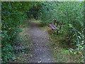 SU8471 : Seat, Wick's Green recreation ground by Alan Hunt
