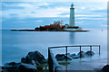 NZ3575 : St Mary's Lighthouse by peter maddison