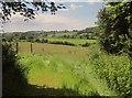 SX3060 : Farmland near Trenethick by Derek Harper