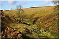 SD9432 : Greave Clough at Clough Foot by Bill Boaden