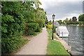 SU8987 : Thames Path by N Chadwick