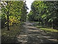 TL5154 : Early autumn on Babraham Road by John Sutton
