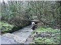 SM8935 : Footbridge near Treseisyllt by Martyn Harries