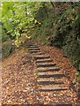 ST6376 : Steps from the Frome by Derek Harper