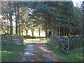 SE0435 : Entrance to Delf Hill Farm by John Slater