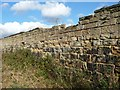 SE3616 : Charles Waterton's wall - a world-first by Christine Johnstone