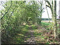 TL6046 : Hedge And Path by Keith Evans