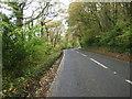 SX3854 : A374 beside Wacker Wood by JThomas