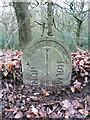 SE1510 : Boundary stone, Woodhead Road by Humphrey Bolton
