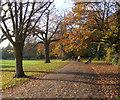 TQ3571 : Mayow Park (4) by Stephen Richards