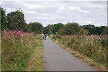 SE3057 : Nidd Valley line by N Chadwick