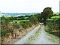 S4328 : On the Kilmacoliver Loop Walk by Humphrey Bolton