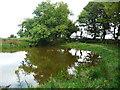 S4328 : Pond at Bregaun by Humphrey Bolton