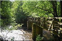 SE3258 : Footbridge across the Nidd by N Chadwick