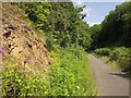 SX5185 : Granite Way at Lydford by Derek Harper