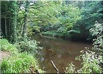 SE3357 : River Nidd in the Nidd Gorge by N Chadwick