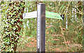 J3168 : Fingerpost towpath sign, Belfast - December 2014(1) by Albert Bridge