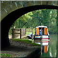 SJ9380 : Canal by Ryles Bridge east of Adlington, Cheshire by Roger  Kidd
