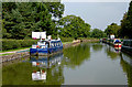 SJ9381 : Macclesfield Canal by Adlington Basin, Cheshire by Roger  Kidd
