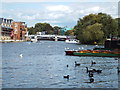 SU9677 : River Thames at Windsor by Malc McDonald
