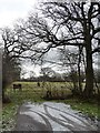 SJ3573 : Snowy entrance to a paddock by Christine Johnstone